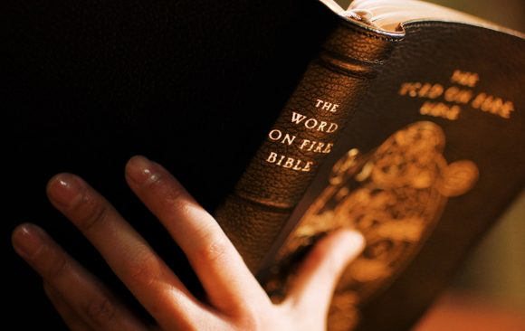 The Word on Fire Bible